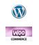web e e-commerce